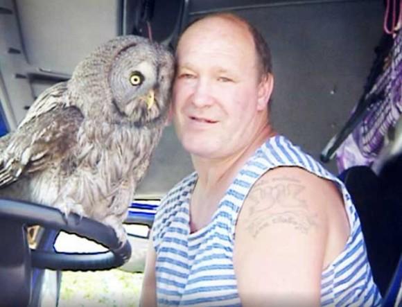 フクロウを助けたらすっかり懐いてしまい、預けた動物園から「手に負えぬ、引き取ってくれ。」 と言われたトラック運転手(ロシア)