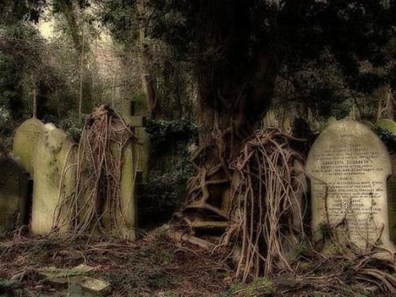 graveyard_scenes_640_30