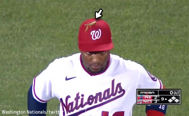 カマキリが野球選手を操ってる!?ナショナルズのロブリス選手の帽子の上を離れないカマキリ