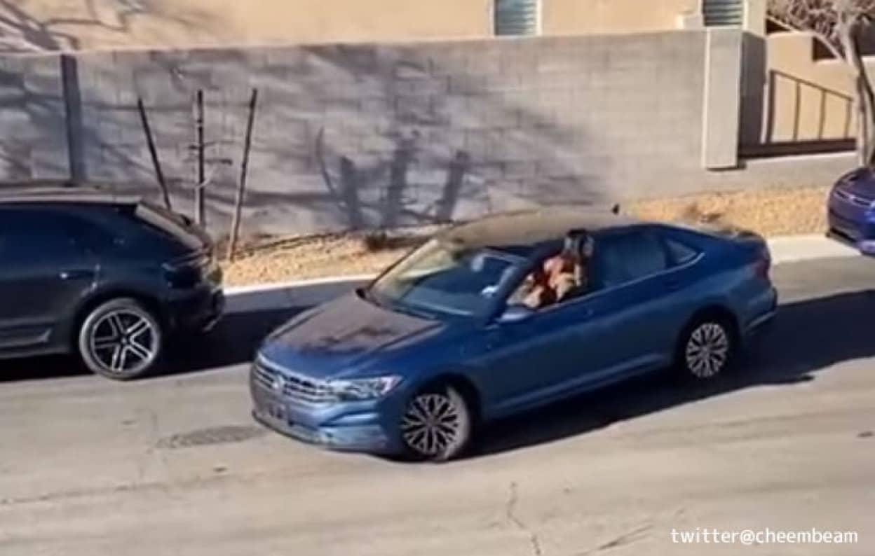 ドライバーが縦列駐車に苦戦、見かねた女性が誘導するも衝撃の結末が待っていた!