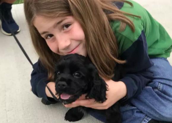 犬をなでるのが大好きな9歳の少年。既に300匹以上の犬をなでてツイッターアカウントで紹介