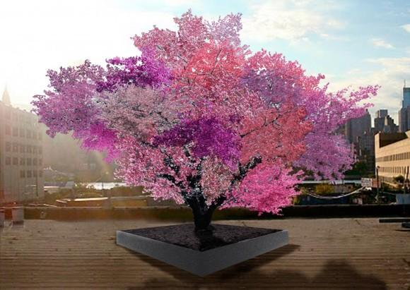 魔法かな?40種類の果物を実らせる木を作り上げた男性(アメリカ)