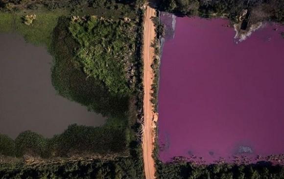 湖の水半分が紫色に染まる異変