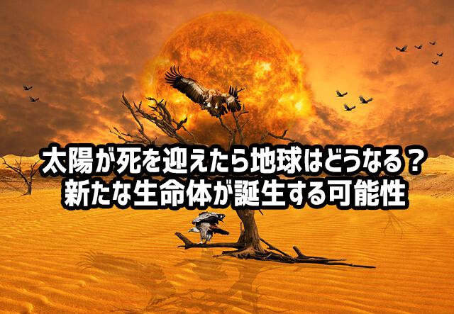 太陽が死を迎えたら地球上の生命は絶滅するが、まったく新しい生命が誕生する可能性が示唆される