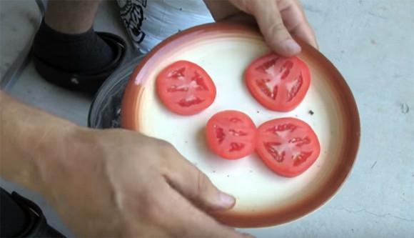 何これちょっと試したい。トマトを栽培する最も簡単な方法、トマトと土があればいい。