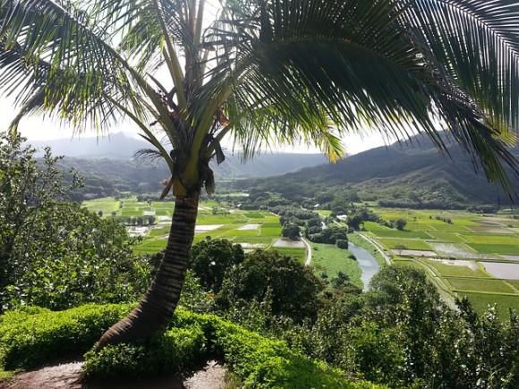 hanalei-kauai-500280_640_e