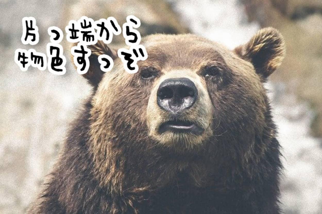 クマが車のドアを次々と開け中を物色する事案