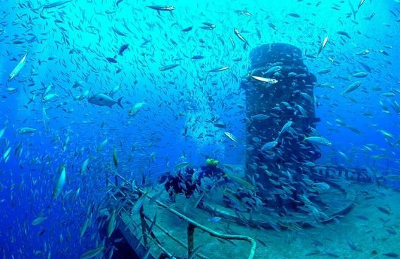 amazing_artificial_reefs_01