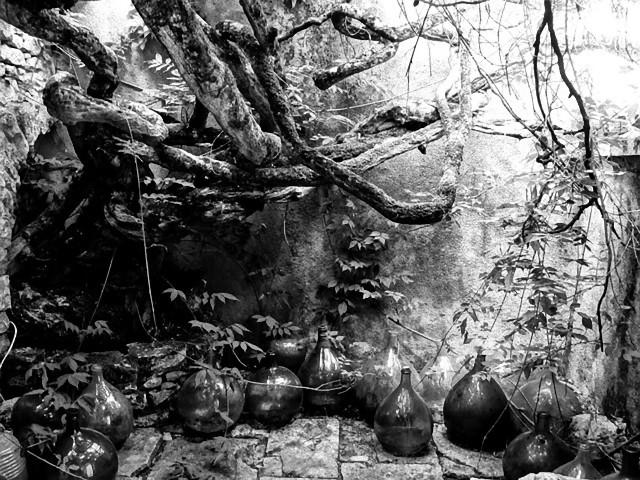 2000年前の白鳥型の青銅の壺に入っていた謎の液体、その正体は?