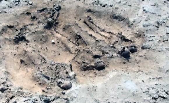 殺人島に葬られた、「難破船バタヴィア号の惨劇」の生存者5人の遺体が発掘され、事件の真相が徐々に明らかに(オーストラリア)