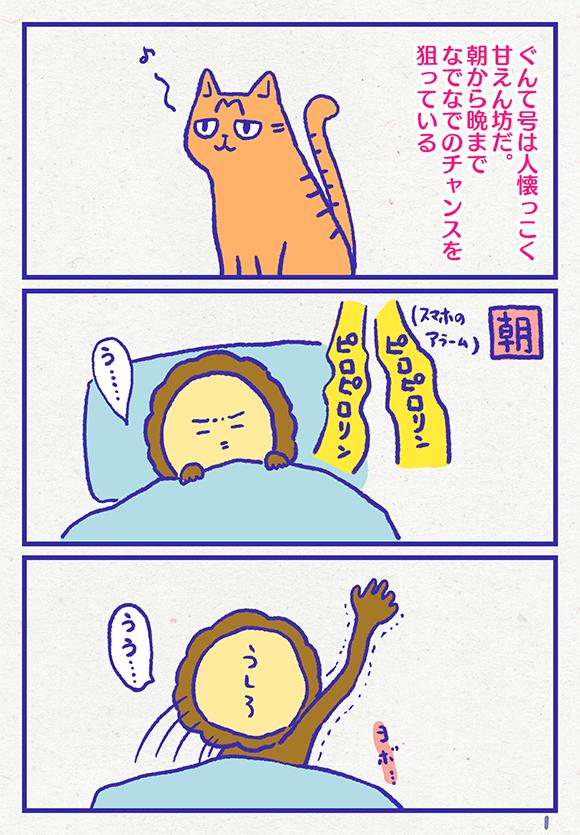 ib3401