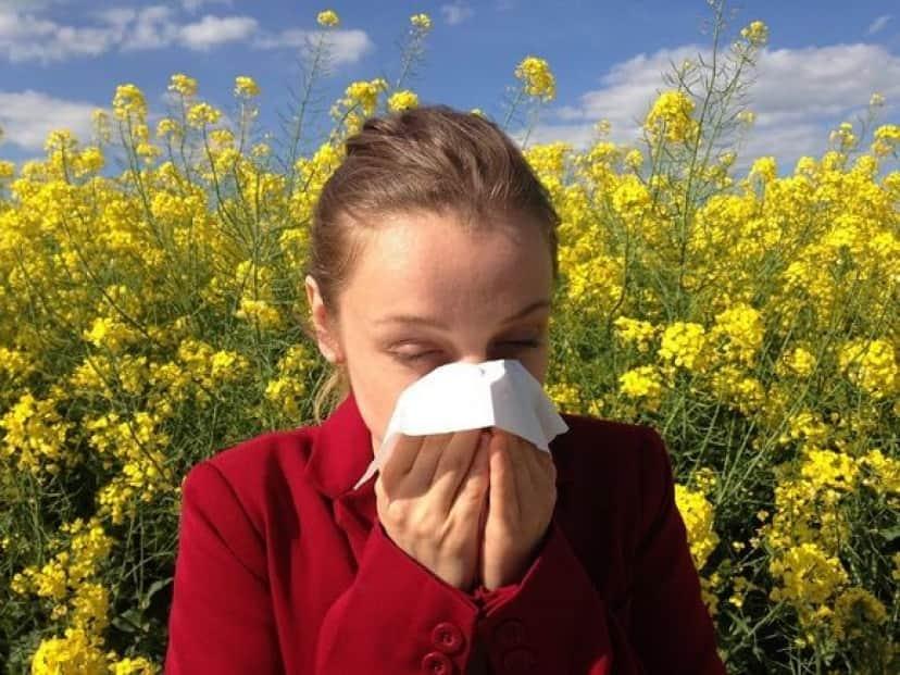 allergy_pixabay