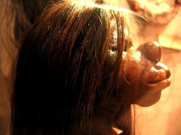 装飾用に加工された人間の頭部。「干し首」という文化とその作り方