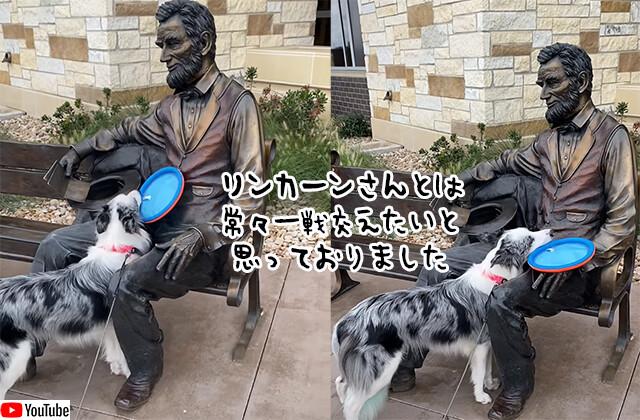 リンカーン大統領とは是非遊びたかった犬。フリスビーを持ってきておねだり