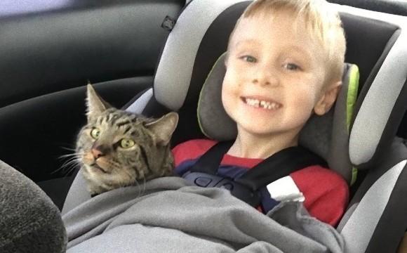 少年がサンタに託した願いは「山火事で行方不明になった猫が戻ってきますように」そしてその願いが叶う!(アメリカ)
