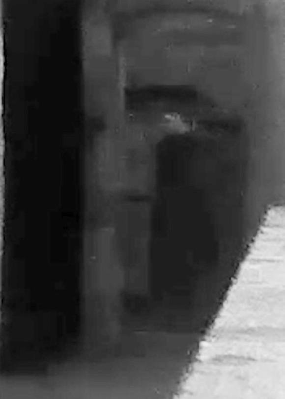 ghost4_e