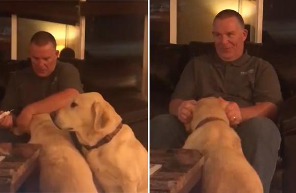 次は自分の番だから!耳に治療薬を入れる兄弟犬の後ろで健気に待つ犬。だが君には必要ない。そこで飼い主は考えた