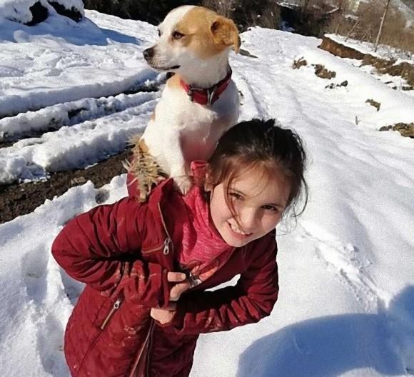 病気の犬を背負って雪の中を歩き続け、獣医に助けを求めた少女(トルコ)