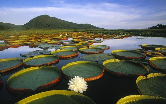 風景画像,ファンタジー世界,綺麗な風景写真, 綺麗な風景 不思議 絶景