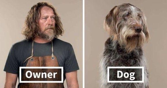 飼い主とペットは似てくるっていうけど...むしろ飼い主の方から寄せて行ってみた犬と飼い主のそっくり比較写真