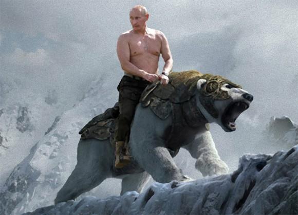 【海外】ロシアの島を獰猛なホッキョクグマ数十頭がうろうろ。住居や公共施設にも立ち入り、非常事態宣言発令 YouTube動画>1本 ->画像>11枚