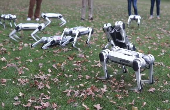 未来のドッグランってこんな感じ?犬型ロボットが9台で芝生の上を駆け回るとかいうSF的光景が展開される