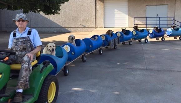 捨てられた犬たちを楽しませたい!犬列車を作り犬を乗せ、自分の残りの人生を犬の為に捧げたおじいさん(アメリカ)の画像