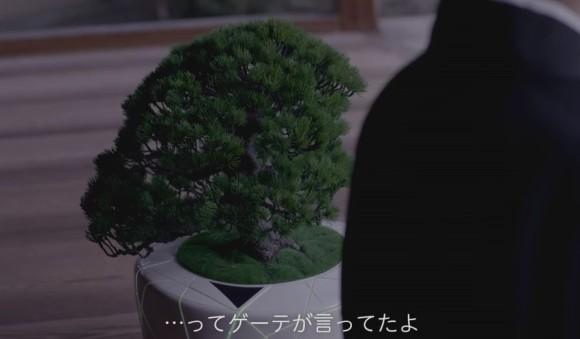 bonsai6_e