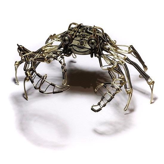 7b-crab
