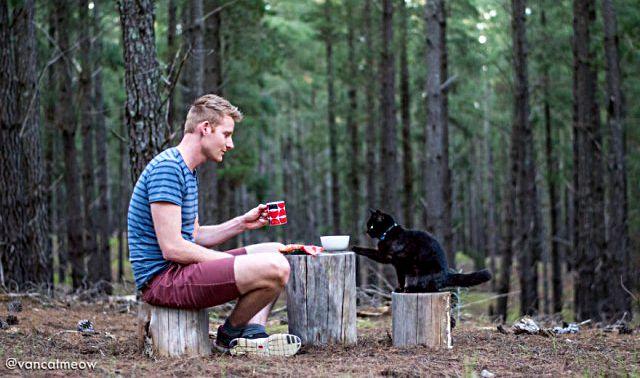 1人と1匹と1台。風の向くまま気の向くままに、猫と旅するオーストラリア