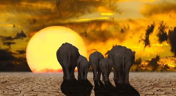 気候変動の危機から文明を救う4つの革新的な計画