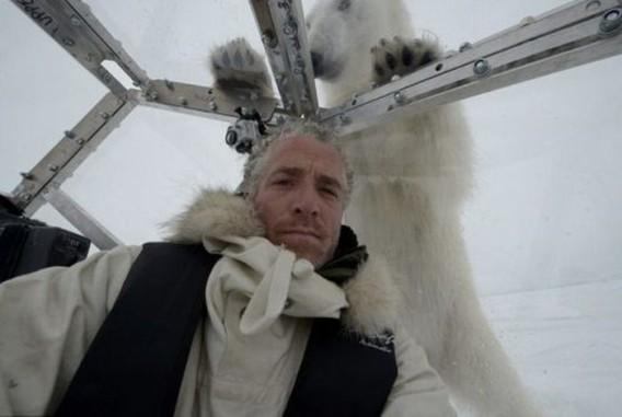 polar_bears_13_e