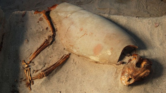 古代エジプト人は、動物を愛すべきペットとして飼っていた。世界最古と思われるペット墓地が発見される