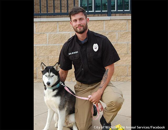 イケメンにイケハスキーの相乗効果がSNSで話題沸騰!保護犬の引き取り手が殺到する