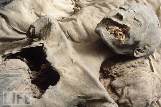 amazing_mummies_13