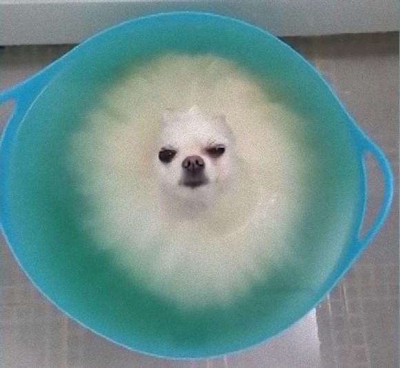 bath2_e