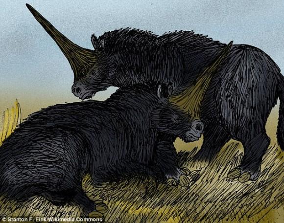 これが伝説のユニコーン!?2万6,000年前に人類と共に暮らしていた一角獣の頭蓋骨を発見(カザフスタン)