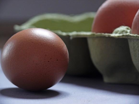 egg-1803368_640_e