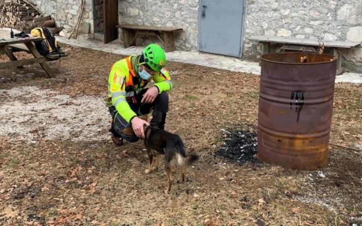 ハイキング中遭難した男性、愛犬が支えとなり無事生還