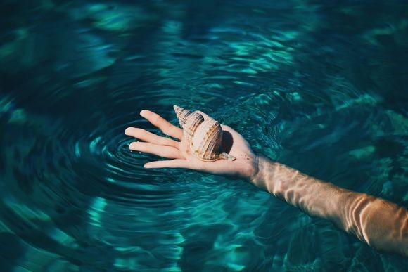 hand_pixabay