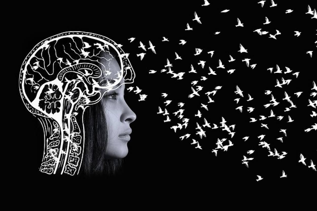 知性と顔立ちに関連性はないとする研究