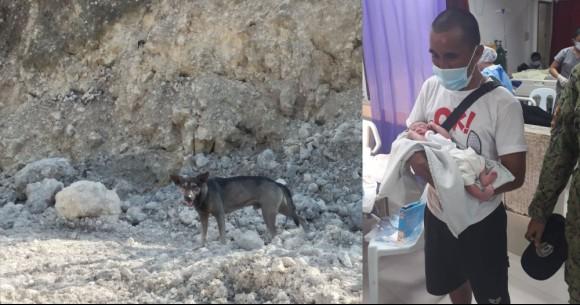 助けを求めるためにほえ続けた犬、新生児の命を救う