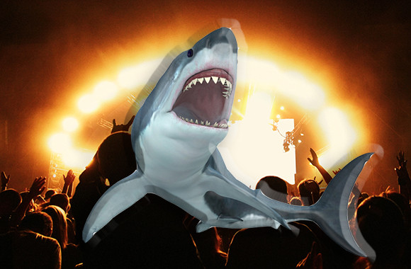 デスメタルは巨大なホホジロザメを魅了する。その理由とは?(米研究)