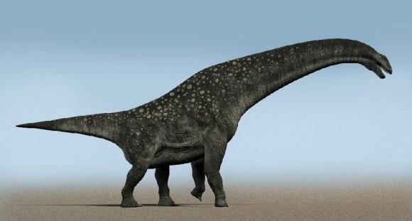 70トンの巨体。既知の恐竜としては最大のティタノサウルスの化石が大量に発見される(アルゼンチン)