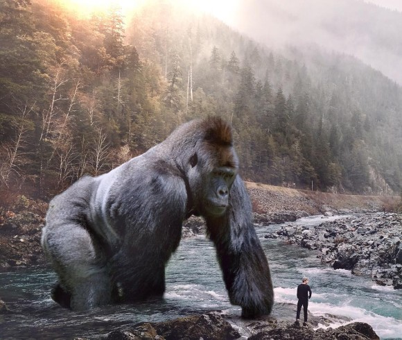 地球上に存在するすべての動物たちが巨大化したら世界はどう変わるのだろう?大きな動物とちっぽけな人間のシュールな構図