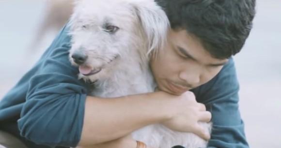 人間のぬくもりを知らない野良犬たちを心から抱きしめたら何が起こるのか。野良犬を抱きしめるプロジェクト「ファースト・ハグ」