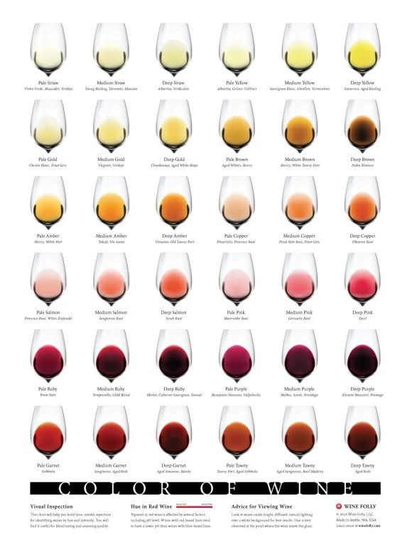 Color-of-Wine-chart-winefolly_full_e