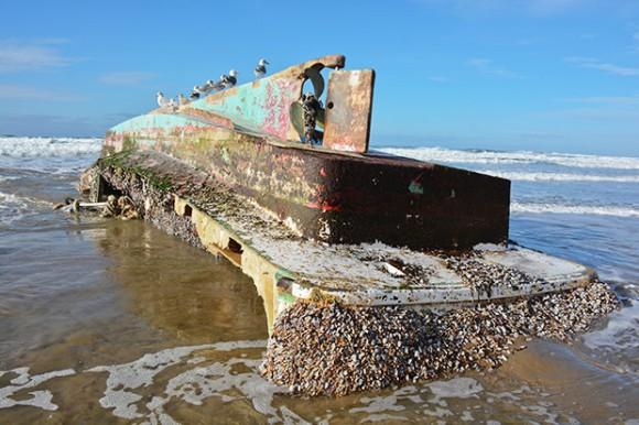 東北地方太平洋沖地震から6年、津波で流された漁船がアメリカ・オレゴン州の浜辺で発見される