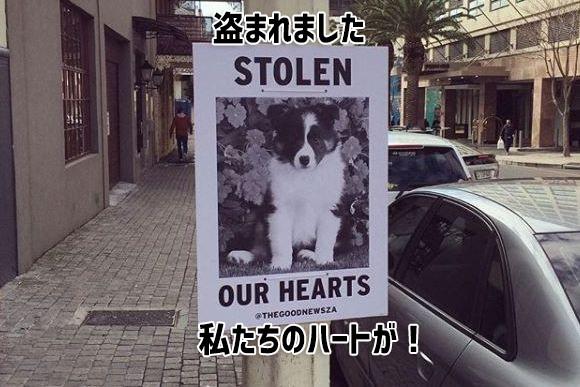 悲しいニュースばかりが目立つ世の中にユーモアを!クスっと笑える面白ポスターで人々を笑顔にするプロジェクト