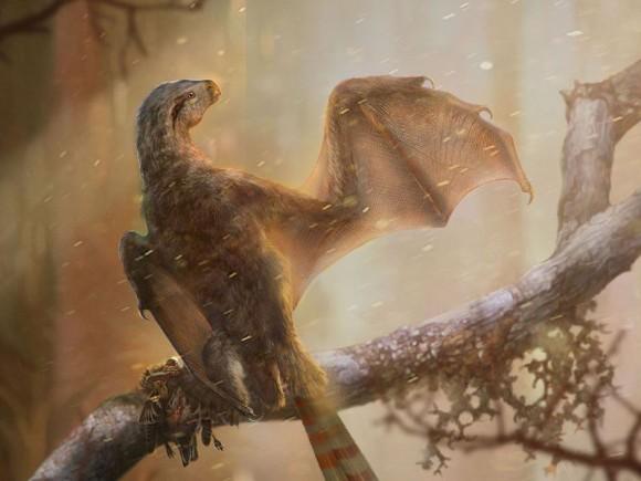 コウモリのような翼を持つ恐竜の化石が発見される。そこには恐竜が空を飛ぶための試行錯誤の痕跡が(中国)